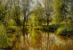 Peder Mork Monsted - Alandskab我Solskin酒店恩Forarsdag