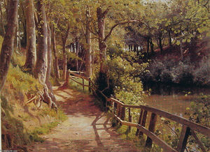 Peder Mork Monsted -  的 森林  路径