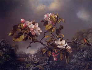 Martin Johnson Heade - 苹果花和蜂鸟 1