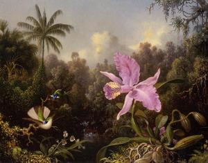 Martin Johnson Heade - 兰花和两Hummingburds