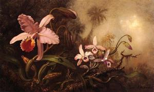 Martin Johnson Heade - 兰花和甲壳虫