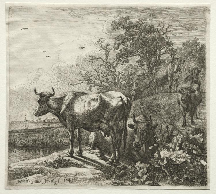 牛郎 通过 Paulus Potter (1625-1654, Netherlands)