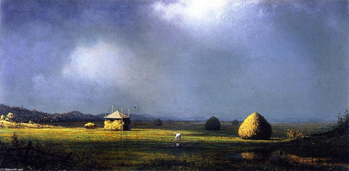 阴天, 1874 通过 Martin Johnson Heade (1819-1904, United States) | 藝術再現 Martin Johnson Heade | WahooArt.com