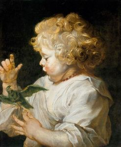 Peter Paul Rubens - 男孩 鸟