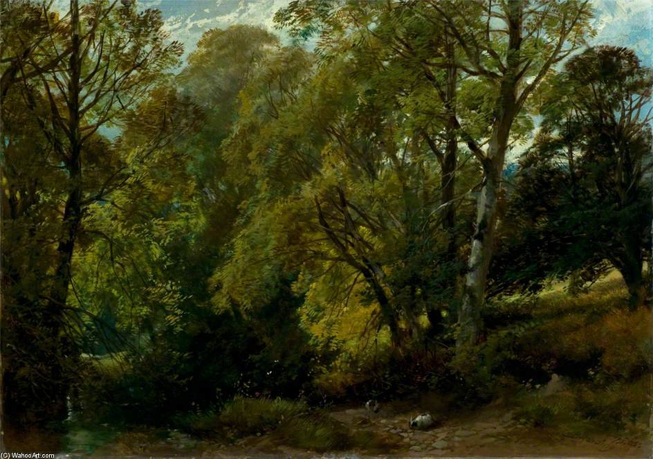 一个 阴凉  角落  通过 James Duffield Harding (1798-1863, United Kingdom)