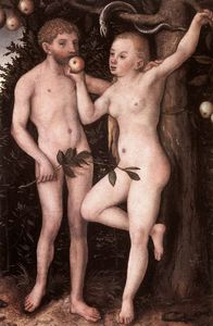 Lucas Cranach The Elder -  亚当  和  前夕