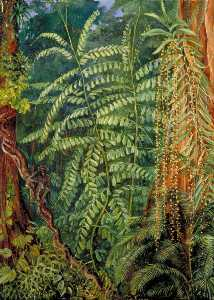 Marianne North - 植被 和香港outang 在 森林 Mattanga , 婆罗洲