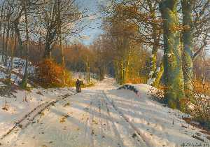Peder Mork Monsted - 冬季 景观